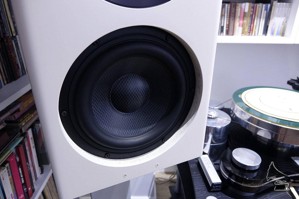 低音單元負責低至超低頻範圍。
