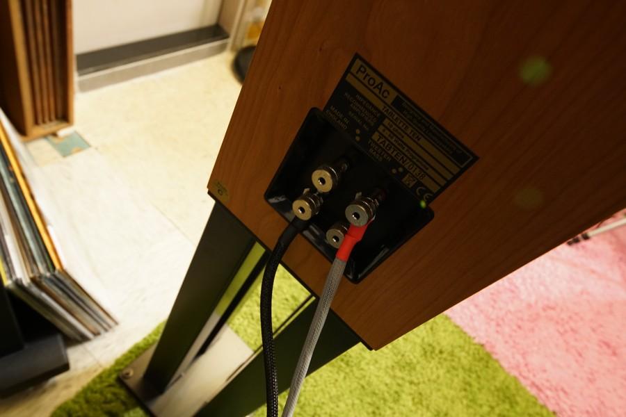 遇上Bi-Wire的喇叭,最平衡的方式是正極接高音,負極接低音